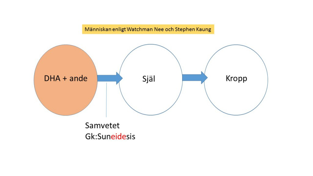 Watchman_nee